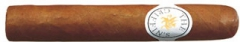 The Griffins Robusto
